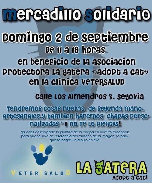 Mercadillo solidario en Segovia, ciudad.