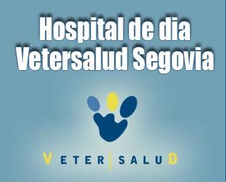 Vetersalud Segovia